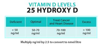 Vitamin D Test Levels
